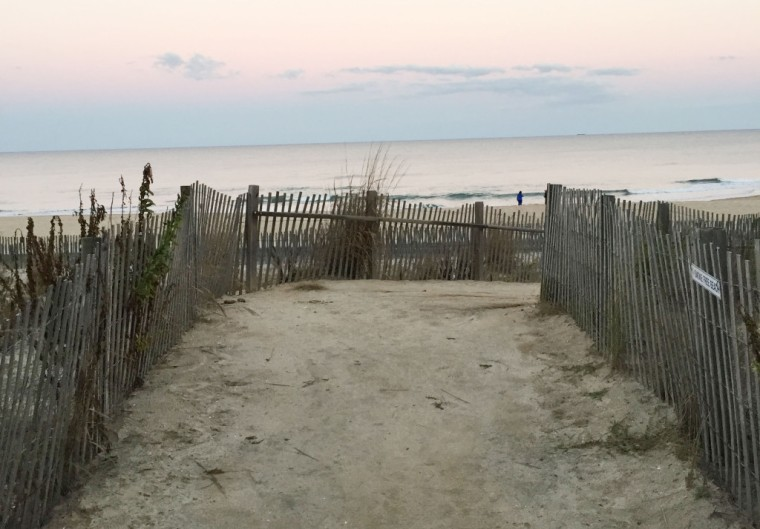 beachpath-1024x714