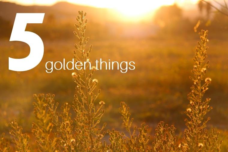 5 golden things - Kellie